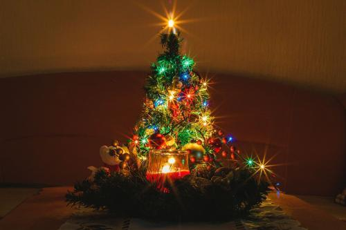 Christmas tree – the history and interesting story of a Christmas tree that is not what you think it is