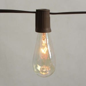 10 Count ST40 Edison Bulb Electric LED String Light