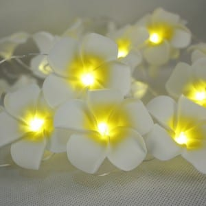 Prepainted Aluminum Sheet Outdoor Holiday Decoration Light -