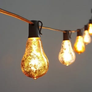 Edison Light LED String with Foil Silver Bulbs