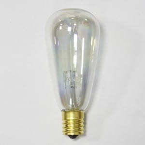 10 Count ST40 Bulb Edison String Light Outdoor