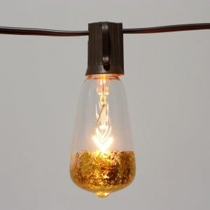 Incandescent & LED Edison Bulb String Light  MYHH19049