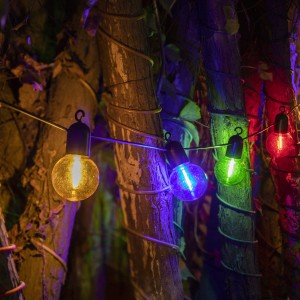 15FT Christmas Lights 10 Count G60 Bulb LED String Lights