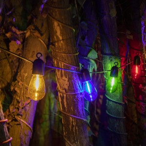 15FT Christmas Lights 10 Count S14 Bulb LED String Lights