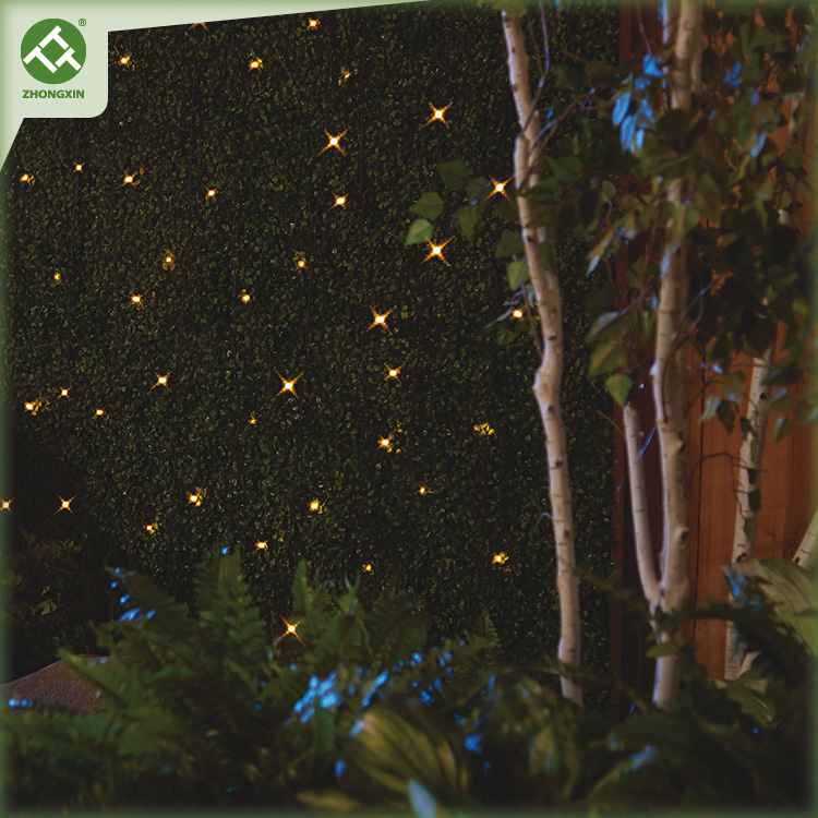 Solar LED String Light Outdoor Lighting for Holiday Decoration Featured Image