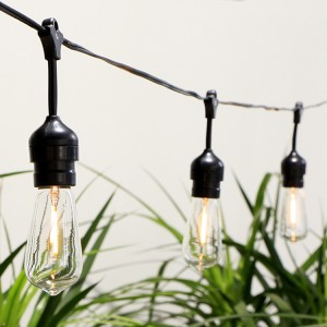 ZhongXin,Vintage Edison Light Bulbs:ST40 E17 2700K Warm White Light bulbs&Waterproof LED Outdoor Hanging String Lights