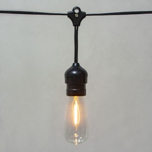 ZhongXin,Vintage Edison Light Bulbs:ST40 E17 2700K Warm White Lightbulbs&Waterproof LED Outdoor Hanging String Lights