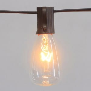 Incandescent Lights String Outdoor With Brown Wire Clear Bulb